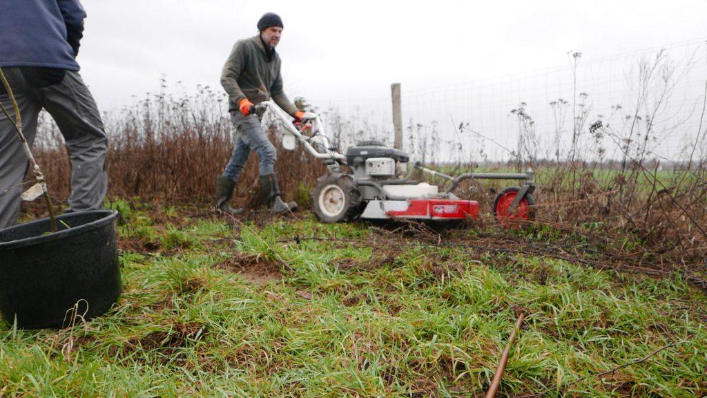 Ackercrowd Projekt in Brandenburg