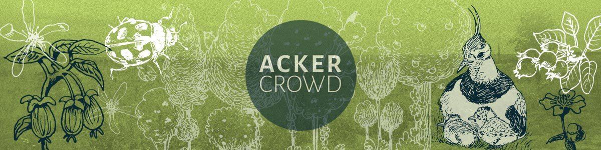ackercrowd-header-main